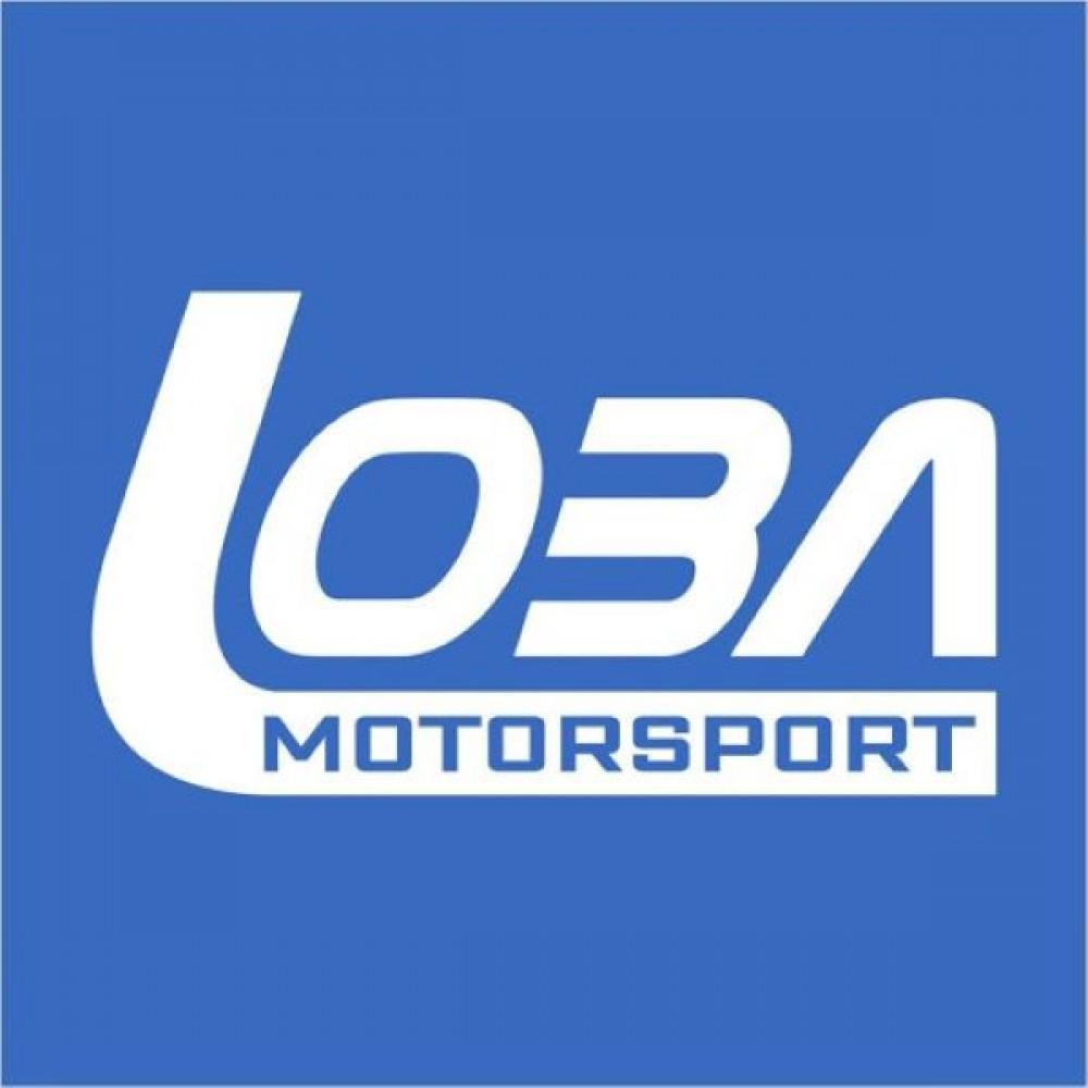 Σετ βαλβίδες εισαγωγής / εξαγωγής (24 τμχ) της Loba Motorsport για VAG V6 3.0 TFSi/ 3.2 FSi (7110300)